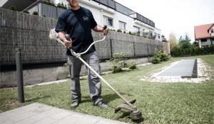 grünanlagenpflege-salzburg2